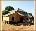 Pushkar Tents