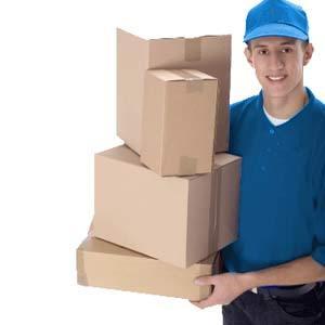 Domestic Parcel Services