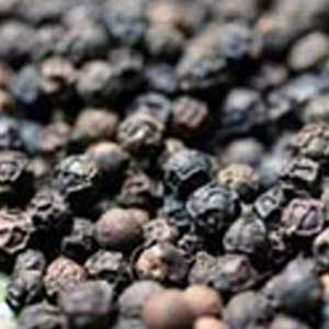 Round Dried Black Pepper Seeds