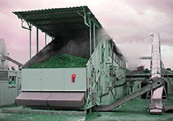 Drying Conveyor System