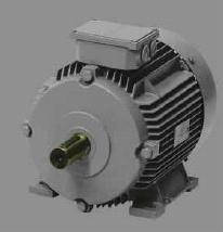 3 Phase Squirrel Cage Induction Motors