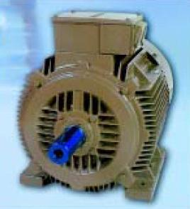 Tefc 3 Phase Squirrel Cage Induction Motors