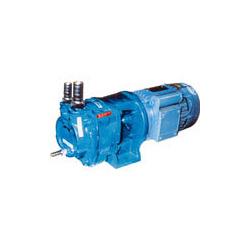 Monoblock Water-Ring Vacuum Pumps