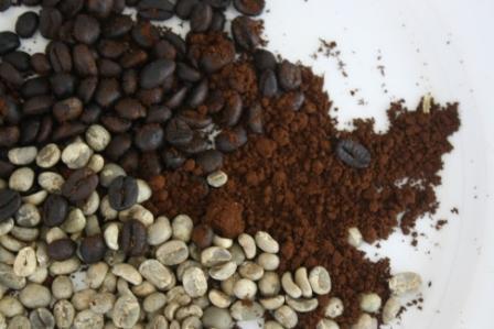 Green Bean Arabica Coffee