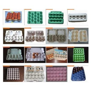 Pulp Moulded Trays