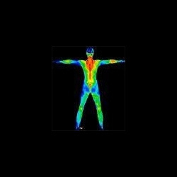 Thermal Imaging And Thermography