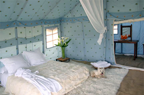 Economical Swiss Cottage Tent