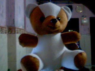 Teddy Bear-10