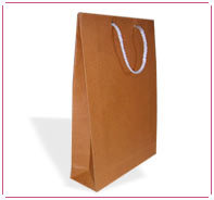 Assorted Color Paper Bags