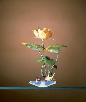 Penn Plax White Water Lily