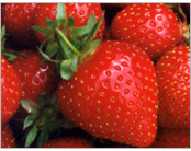 Fruit Phyto Therapy Facial Strawberry Series