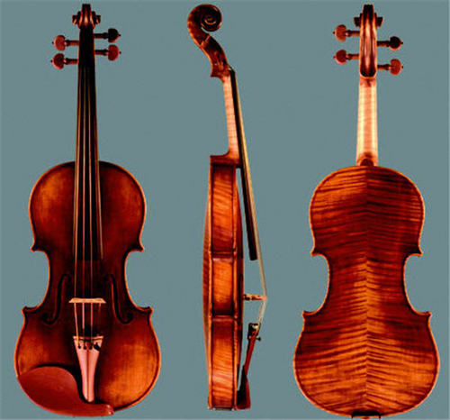 Professional Advanced Violin