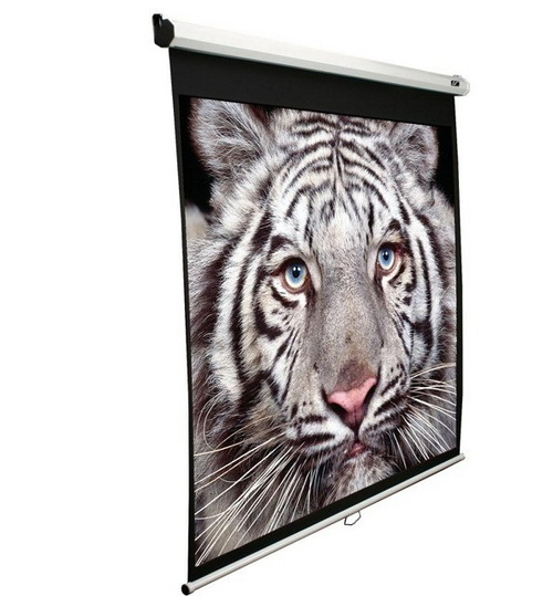 Manual Screen Projection Screen