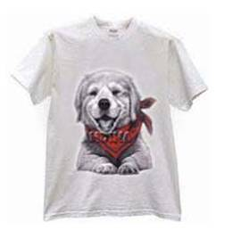 T-Shirt Heat Transfer Paper in Guangzhou, Guangdong - Sky Sun