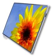 LCD PANEL (A070VW04 V.0)