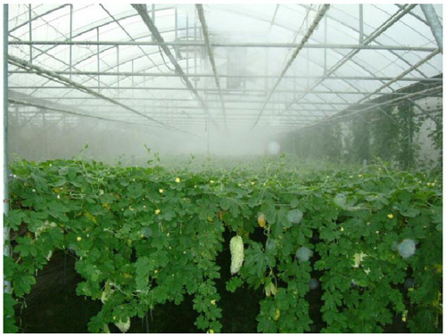 Greenhouse Misting System Kits : Greenhouse misting system in shenzhen guangdong ideal