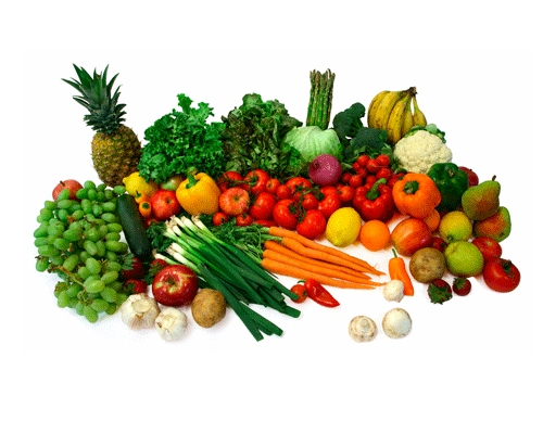 Vegetable Dehydration Plant