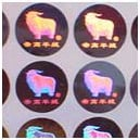 2D Holograms Stickers