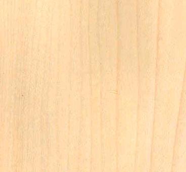 American Maple Veneers