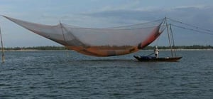 Commercial Fish Nets