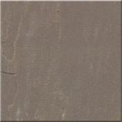 Bijolia Sandstones