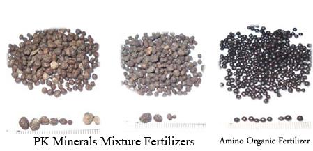 Fertilizers Amino