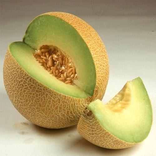 Musk Melon Madhuri Seeds