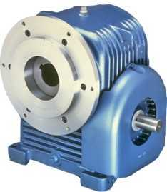 Extruder Drive Worm Gear Reducers