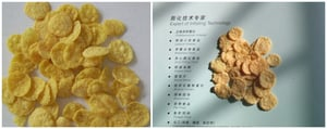 Corn Flakes Processing Lines
