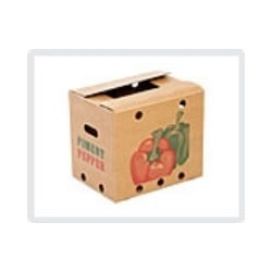 Vegetables Export Boxes