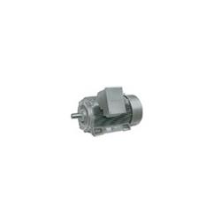 Motor (1LA8 -1PQ8 MOT)