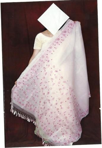 Cotton Hand Painted Saree
