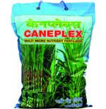 Caneplex