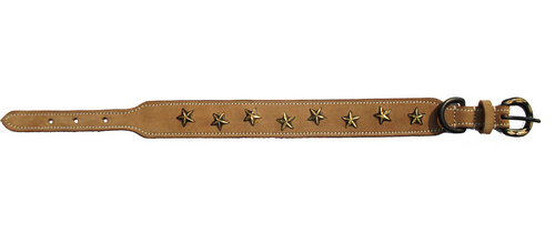 ZK-2697 Dog Collar