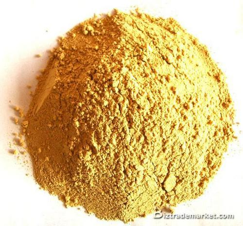 Ginger Dehydrated Powder in  Narhe
