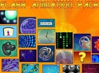 Flash Animations