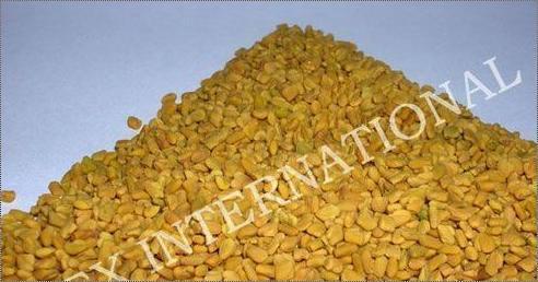 Finest Quality Fenugreek Seeds