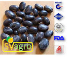 Fresh Mucuna Extract L-Dopa