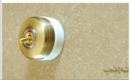 Antique Brass Switch