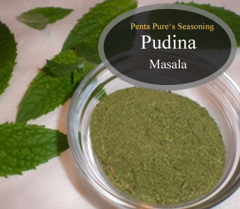 High Quality Pudina Masala Seasoning