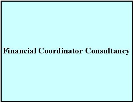 Financial Coordinator Consultancy
