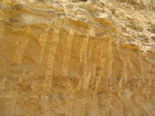 Top Quality Rock Phosphate