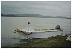 Cruise Motor Boat