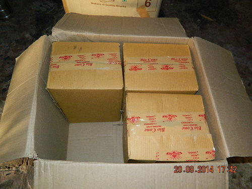 Packing Dhoop Cone