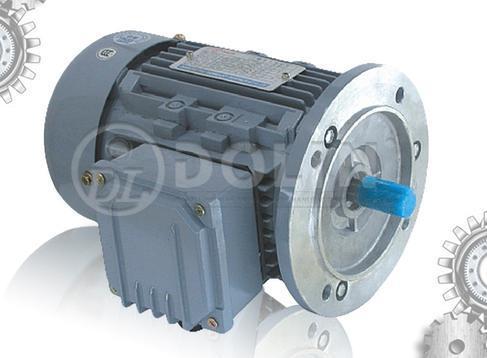 Aluminum 3 Phase Induction Motor (MSB5 Series)