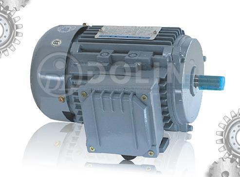 Aluminum Three Phase AC Induction Motor (MSB3 Series)