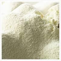 New Zealand Milk Powder
