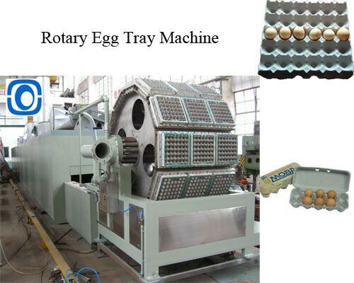 Waste Paper Pulp Molded Egg Tray Egg Carton Packaging Machine 5000pcs/Hr
