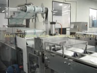 Ty-Gloves Automatic Packaging Machine