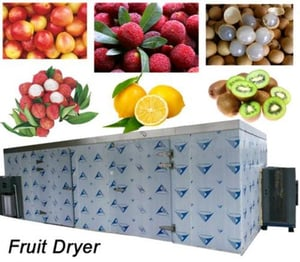Drying Chamber Type Industrial Fruit Dryer